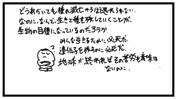 【代替テキスト】4